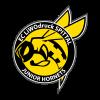 Hornets Spittal